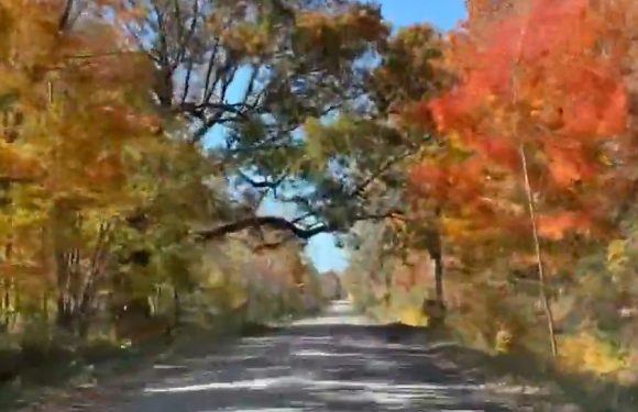 Relaxing Ride: 2019 Mid-Michigan Fall Color Tour [VIDEO]